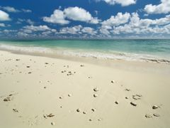 Crociere Isola di Grand Bahama
