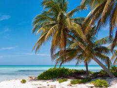 Croisières Grand Cayman