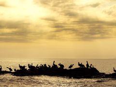 Crociere Puntarenas, Cile