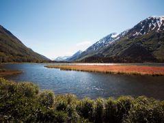 Crociere Homer, Alaska