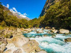 Crociere Fiordland National Park